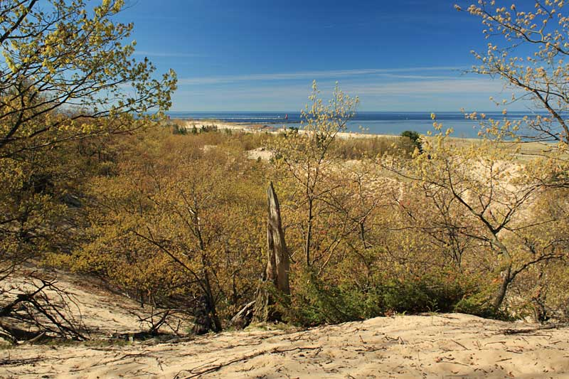 11-view-first-overlook-dune-ridge-hike