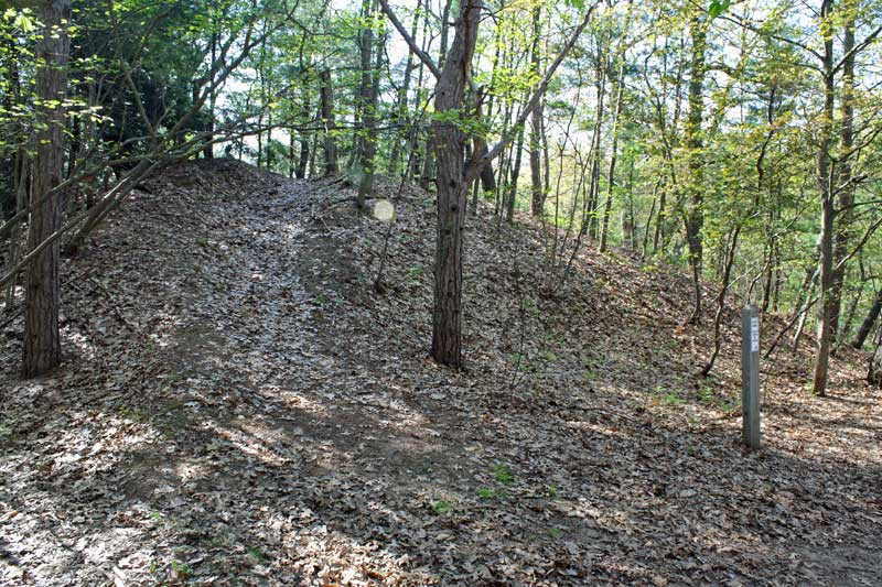 30-scenic-ridge-trailhead-muskegon
