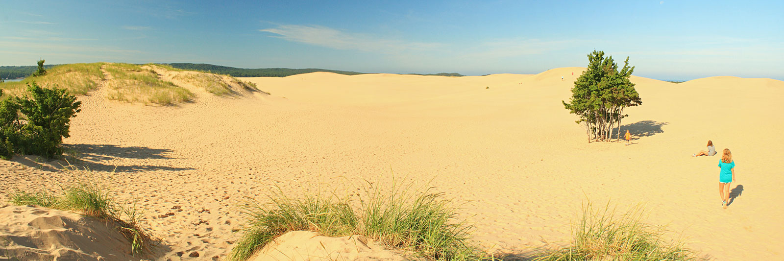 10-dune-view-silver-lake-state-park