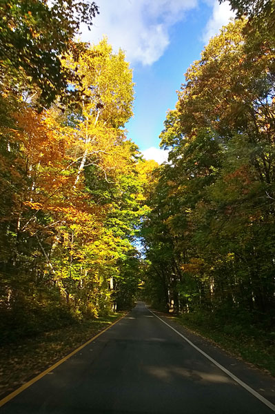 14-peirce-stocking-scenic-drive-fall-colors