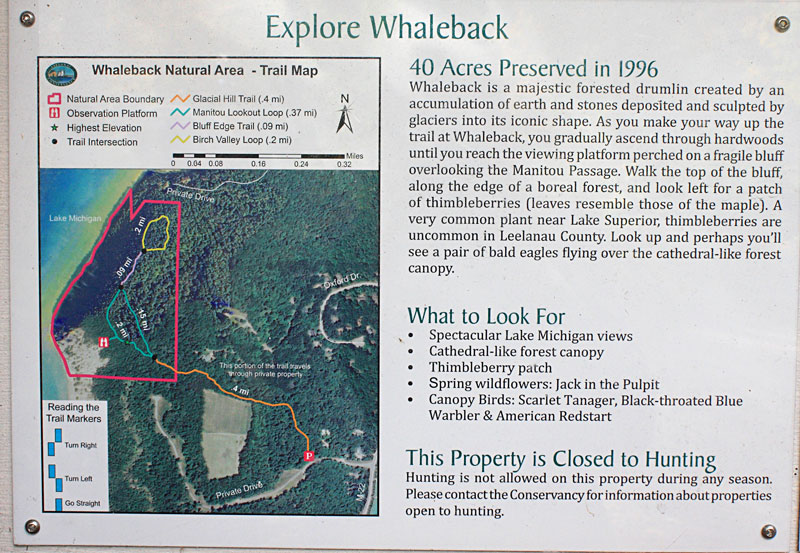 40-whaleback-natural-area-map
