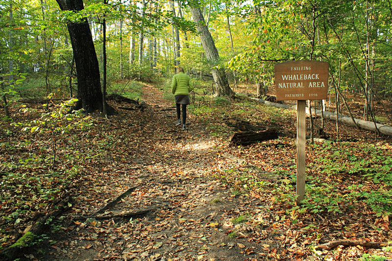 43-entering-whaleback-natural-area-sign