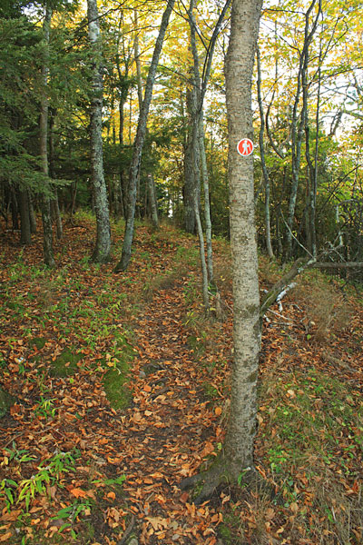 47-trail-whaleback-natural-area