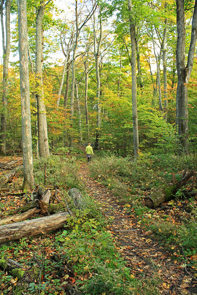 50-trail-back-whaleback-natural-area